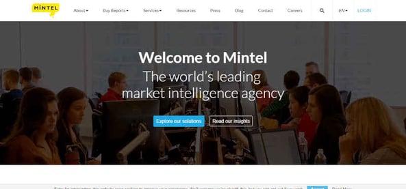 Mintel Global Market Research