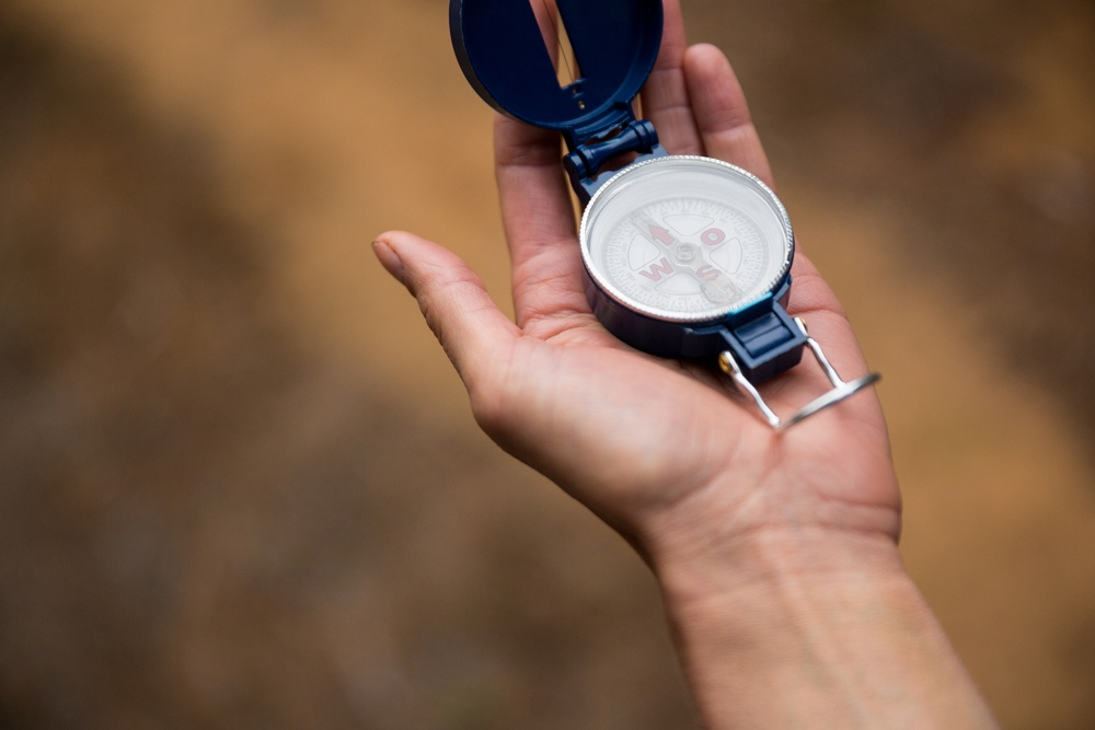 Website Navigation issues Close-up of hand holding compass in forest