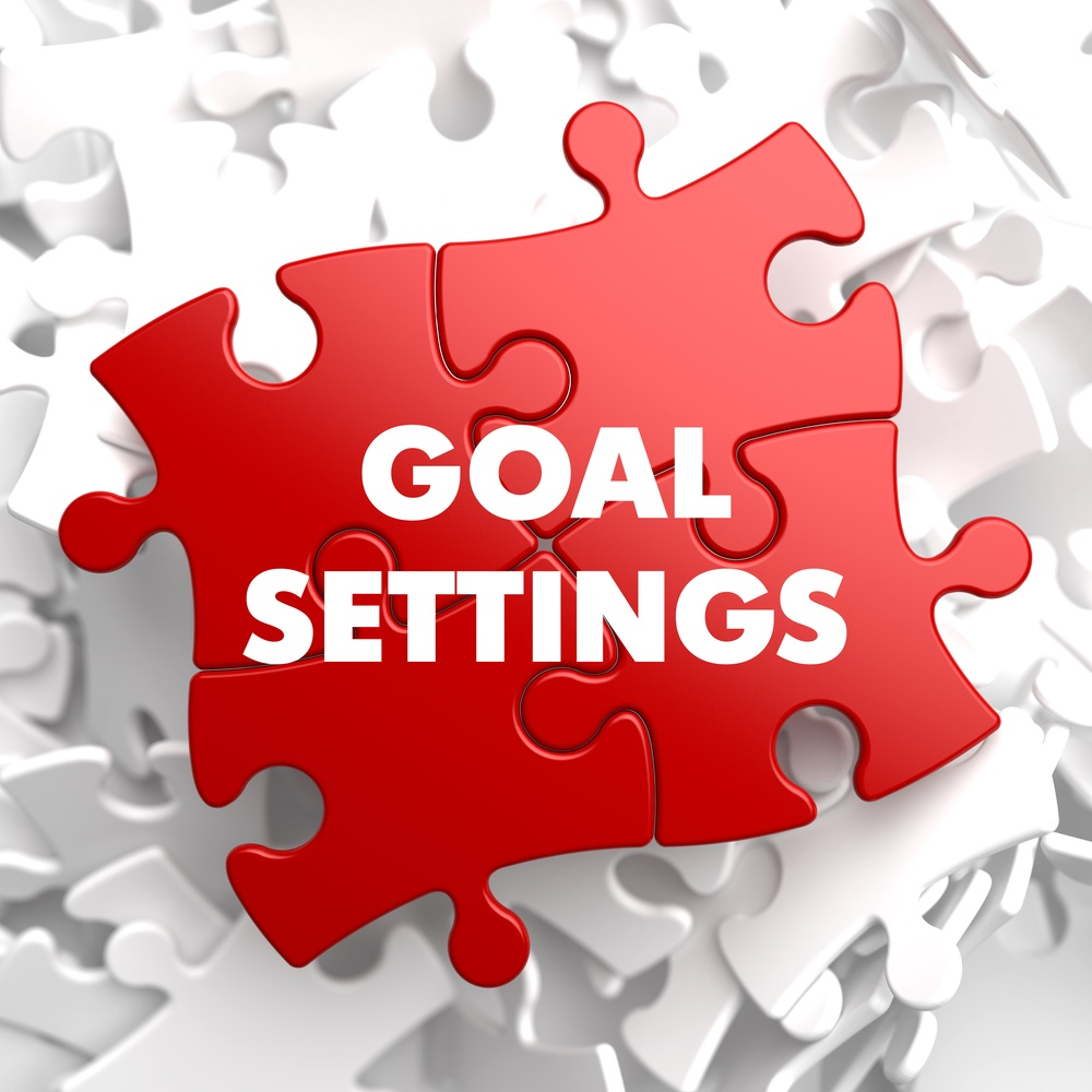 Goal Settings on a website audit report