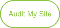 Audit My Site